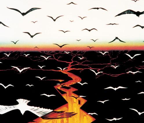 Vladimirkushbirds